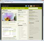 website-daynahnet